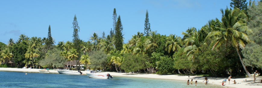 Une plage dans les DOM-TOM